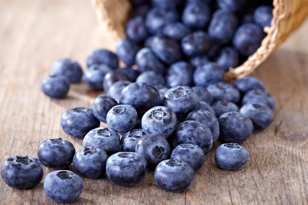 Gut bacteria and blueberries
