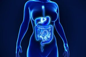 probiotics with enzymes